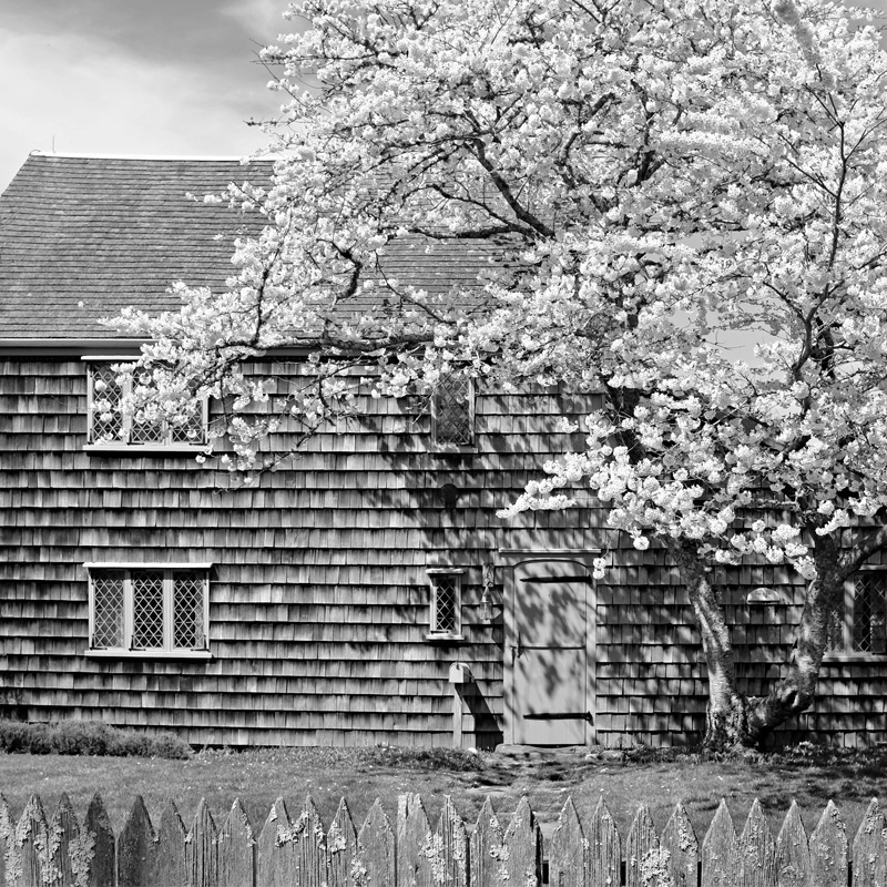 A traditional home on Main Street. Photography by Greg Hinson