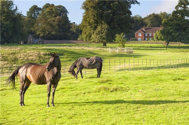 An Outstanding Residential Estate of just under 350 acres standing on the escarpment of the Green Sand Ridge with fabulous southerly views over the Kentish Weald and in an area of the Garden of England famed for its orchards.