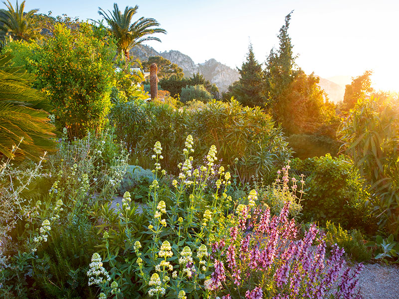 James Basson says the gardens he designs in Europe must sit in harmony with the surrounding landscape. Photograph: Marianne Majerus/Design: James Basson, Scape Design