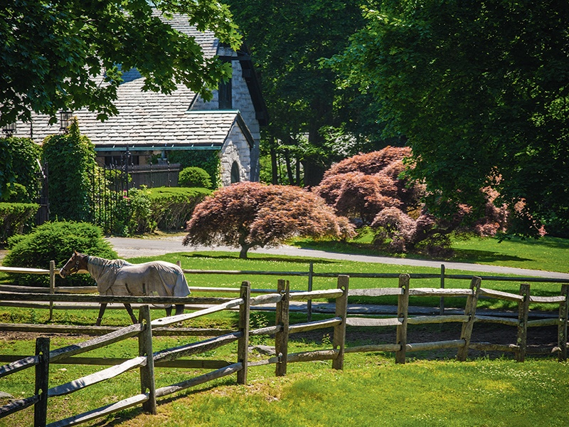 For equestrian enthusiasts, Great Island offers expansive paddocks, a workout track, a jumping ring, and a polo field—in addition to the stables.