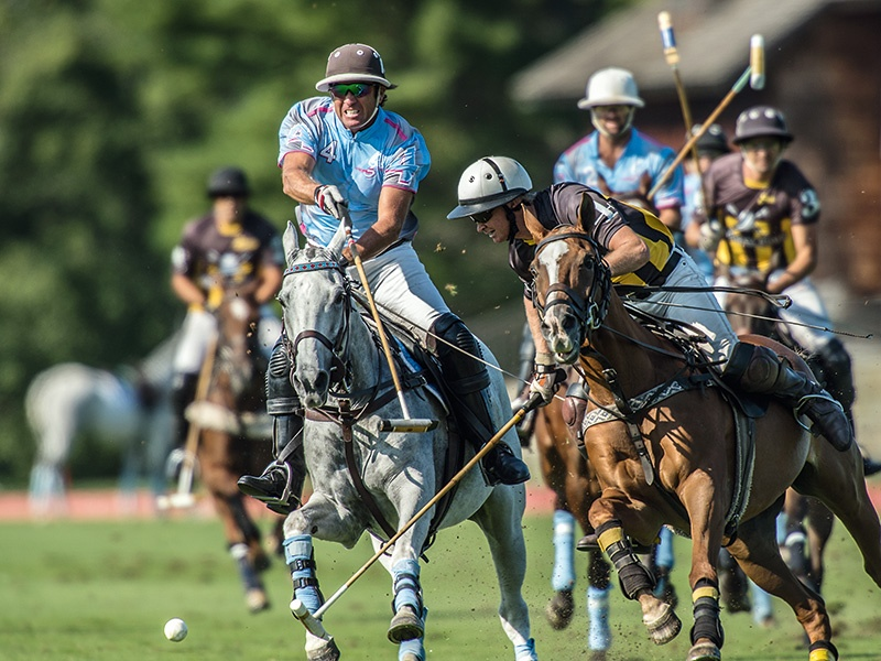 Action from Greenwich Polo Club's 2016 season. This year's polo season spans June 4–July 16 and August 27–September 10. Photograph: Marcelo Bianchi/GreenwichPoloClub.com