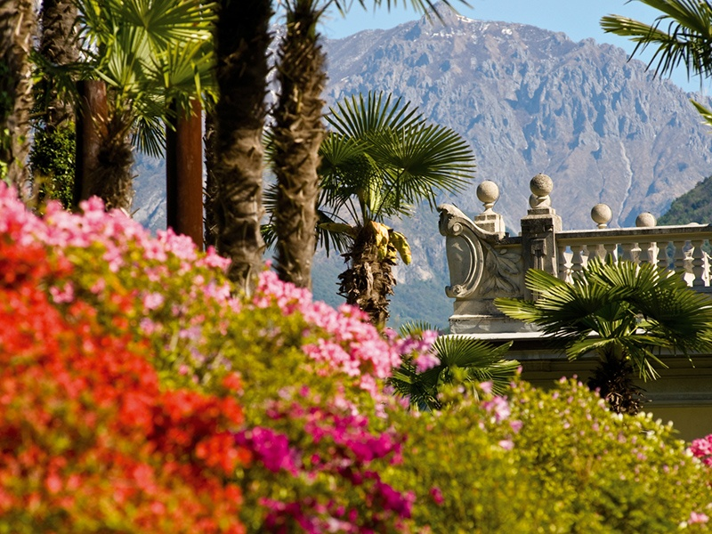 Follow the wooded walkways and plant-lined paths of the Grand Hotel Tremezzo to view Lake Como from above.