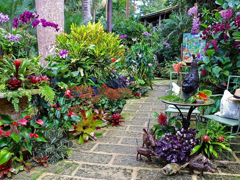 Hunte's Garden in the middle of Barbados's Caribbean rainforest offers a wide range of tropical plants and wide-open spaces to soak up the sun. Photograph: Sue Stubbs