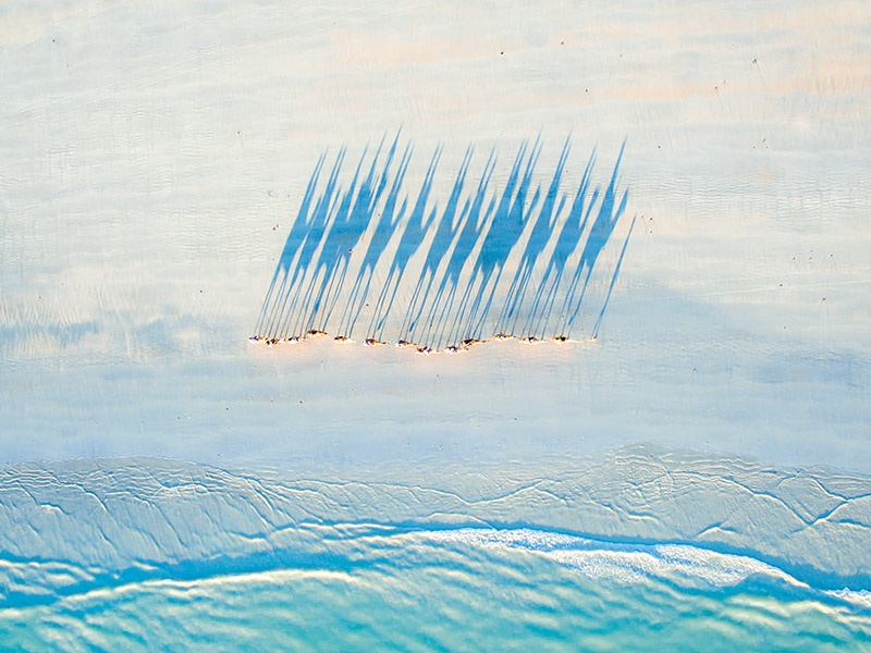 This award-winning shot of a camel caravan on Broome's Cable Beach in Western Australia exemplifies Todd Kennedy's meticulous planning process.