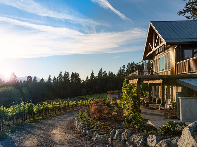 The Blue Grouse Estate Winery has been building its reputation since Paul Brunner bought it in 2012, expanding the winery and tasting room, planting a new vineyard, and opening a guesthouse. Photograph: Leanna Rathkelly