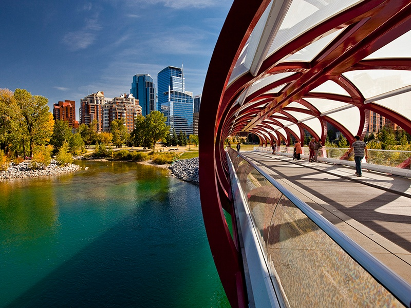 The Peace Bridge, designed by renowned Spanish architect Santiago Calatrava, connects the northern Bow River pathway and downtown Calgary. Photograph: Getty Images