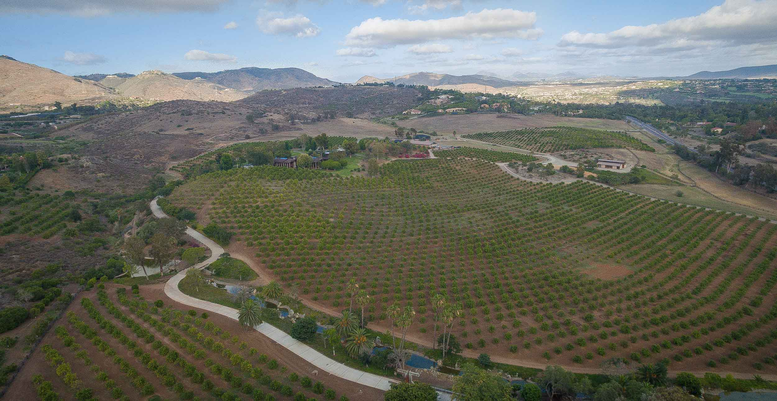 Del Dios Ranch presents an outstanding opportunity to acquire one of the most expansive tracts in coveted Rancho Santa Fe, California. The property includes a 40-acre Valencia orange grove.