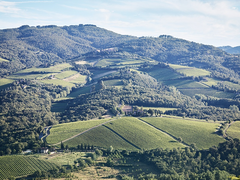 The picturesque Chianti countryside is sandwiched between Florence to the north and Siena to the south.
