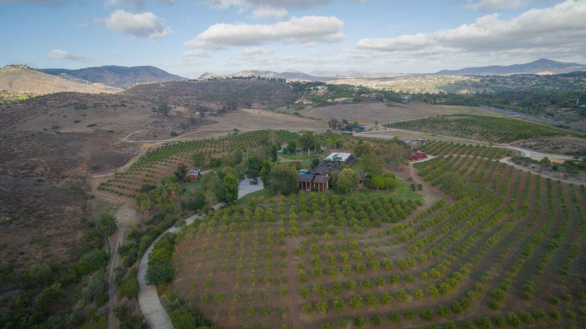 Del Dios embraces 40 acres of producing Valencia orange groves and includes a lake, tennis court, and equestrian facilities.