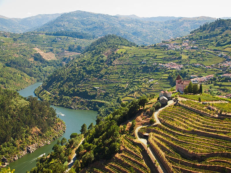 The majestic Douro Valley, where port is produced, is one of the oldest demarcated wine regions in the world. Photograph: iStock