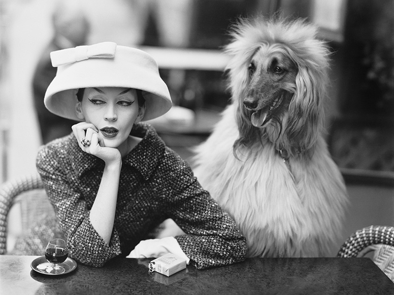 Model and muse Dovima with her dog Sacha at the Les Deux Magots cafe in Paris, 1955. Cloche hat and suit by Balenciaga. Photograph: Richard Avedon © The Richard Avedon Foundation