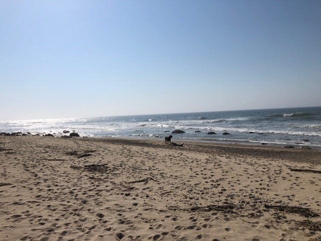 """It's been said that the lifestyle in Montauk """"feels like you're living on the edge of the world and at the same time close to the center of the universe."""""""