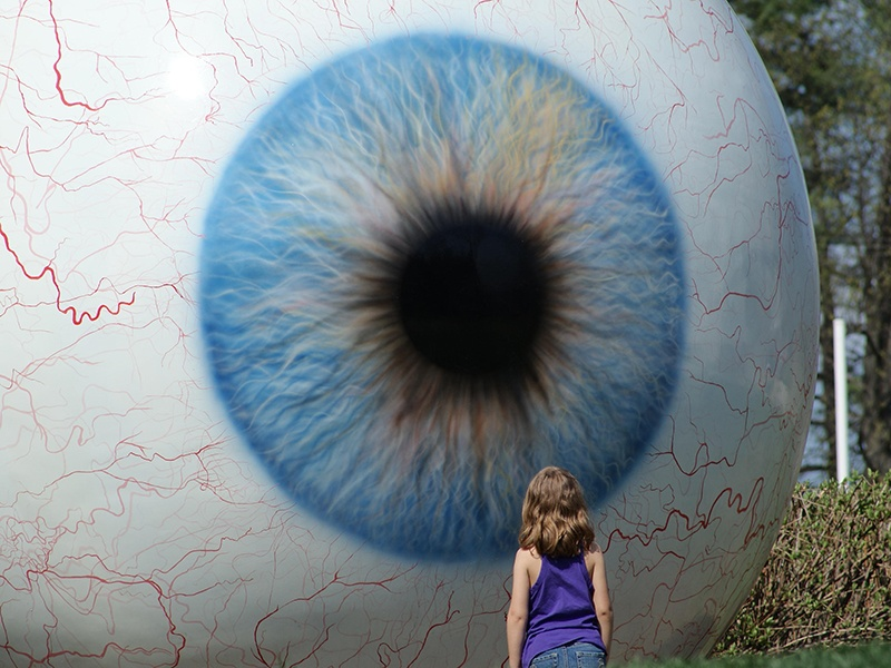 Tony Tasset's <i>Eye</i> stares intently back at visitors to Laumeier Sculpture Park in  Saint Louis. Photograph: Alamy.
