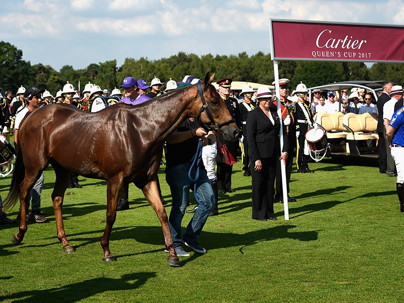 One of the top five polo events in the world, the Cartier Queen's Cup is traditionally attended by HM The Queen. Photograph: Getty Images