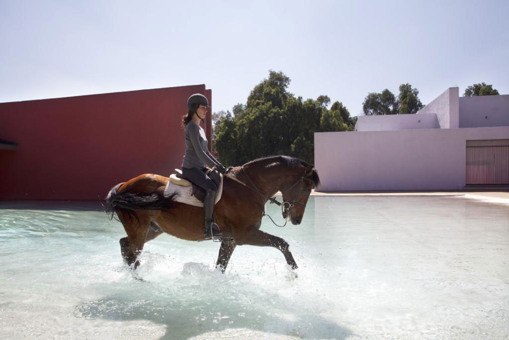 The equestrian pursuits of the owners are reflected through the construction of stables within the grounds, so that the horses should roam free throughout the space, just as guests are invited to.