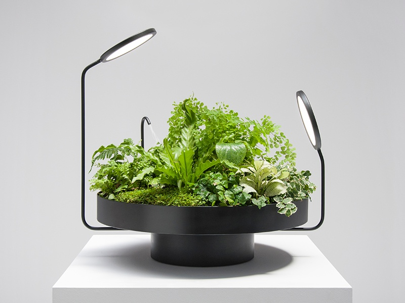 Award-winning Barcelona-based design duo Álavaro Goula and Pablo Figuera create designs that allow indoor plants to thrive without the use of natural light, such as Viride Dos.