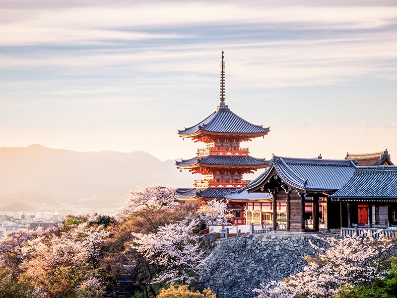During the <i>sakura</i> cherry blossom season, the ancient Kiyomizu-dera Temple—named the Pure Water Temple as it was built on the site of the Otowa Waterfall—is blanketed in soft pink blooms. Photograph: Getty Images