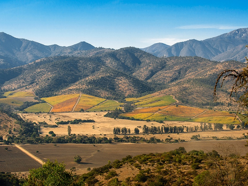 The impressive backdrop to Matetic Vineyards in Chile's San Antonio Valley. The estate has pioneered the biodynamic movement in the production of their cool-climate Syrahs. Photograph courtesy Matetic Vineyards