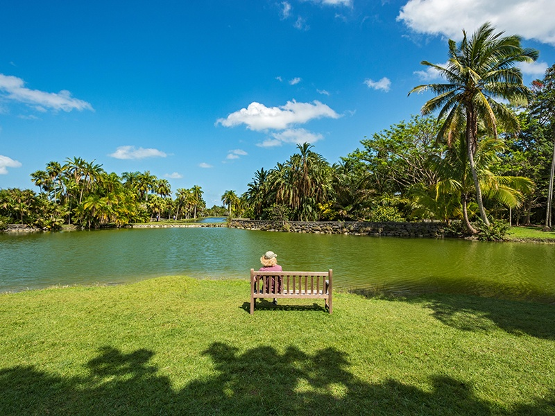 There are 11 lakes and eight water features at Fairchild Tropical Botanical Gardens, including Glade Lake (pictured) – each has a unique ecology and aquatic theme. Photograph: Alamy