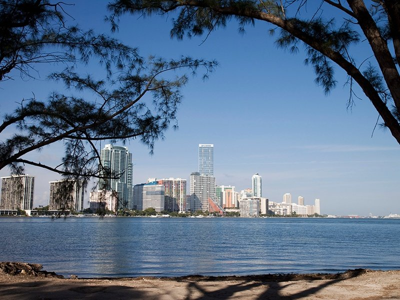 The Miami skyline viewed from Key Biscayne's Rickenbacker Causeway, home to the popular Miami Rowing Club. Photograph: Getty Images