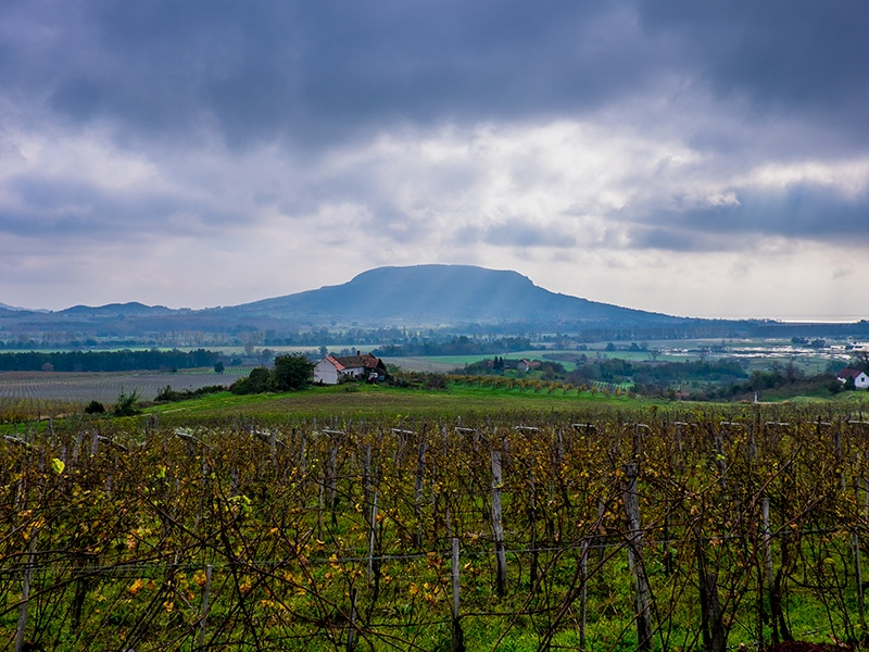 Wines from the Badacsony region of Hungary are full bodied with high acidity, thanks to the surrounding volcanic mountains and effects of Lake Balaton. Banner image: Mount Etna on the Italian island of Sicily. Photographs: John Szabo