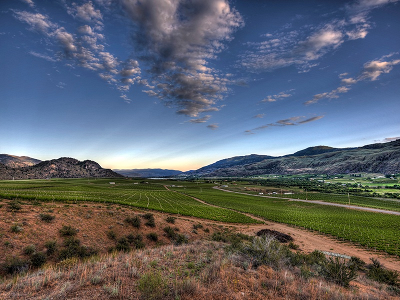 When completed—scheduled for 2019—Phantom Creek Estates in the Okanagan Valley will include 128 acres of vineyards and a 72,000-square-foot winery.