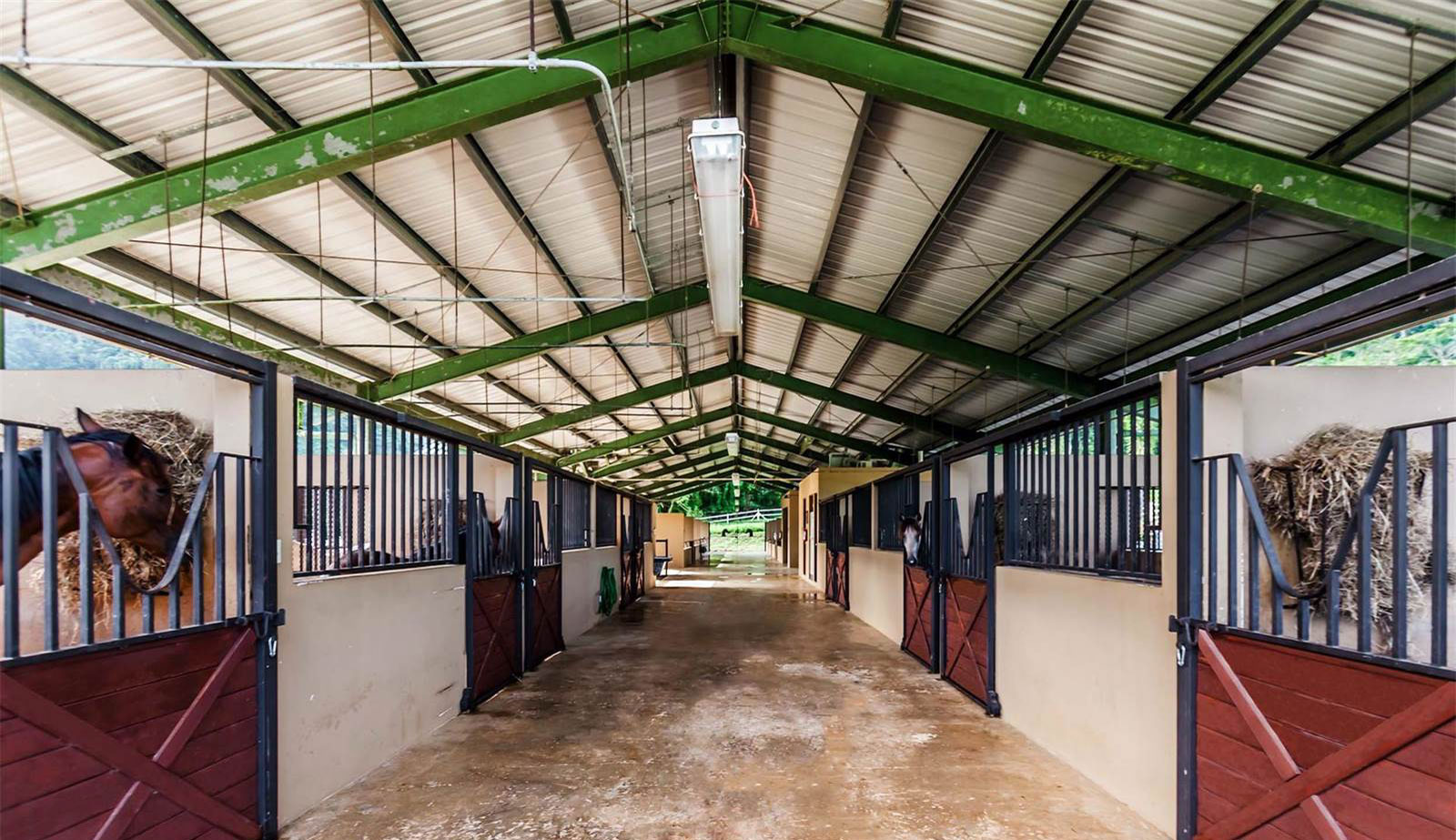 Animal lovers will feel right at home at this 191-acre ranch and farming estate set within the lush landscape of Morovis in the Puerto Rican green belt.