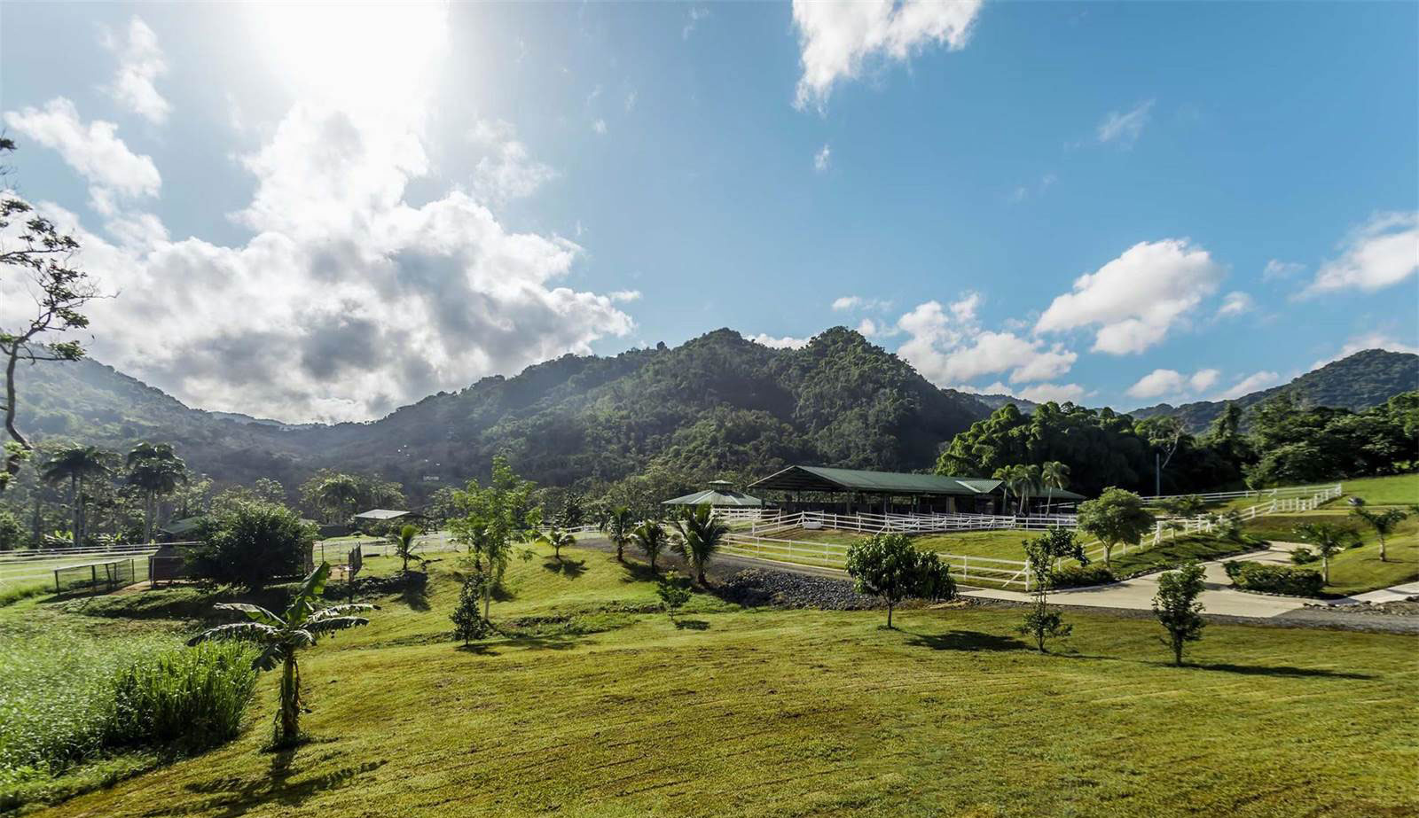 The ranch and recreational facilities are outstanding. An indoor equestrian arena, round pen, loose boxes, and stables for horses, donkeys, llamas, pigs, goats, and sheep are among the delights.
