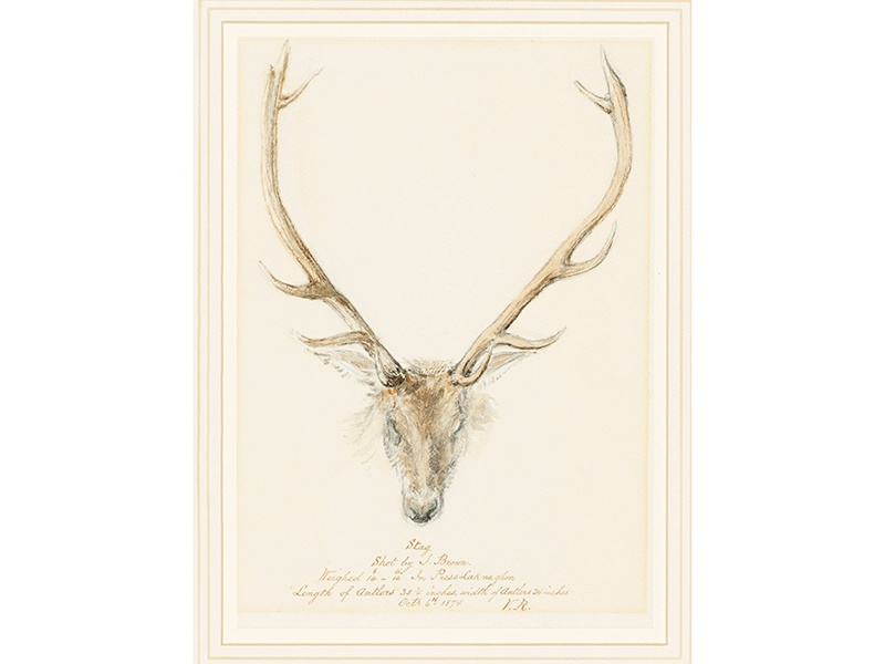 <i>A Stag Shot by John Brown</i>, (estimate £6,000–£10,000), reveals Queen Victoria's talents as a watercolorist. Image: Christie's Images Ltd. 2017
