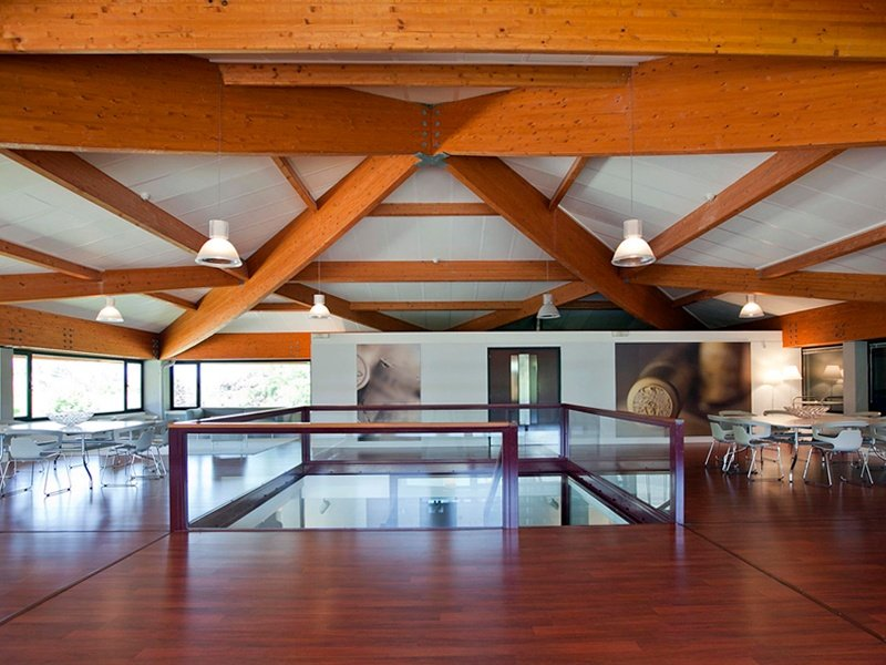 Modern design characterizes this wonderful winery in Navarra. The property, on the market with Rimontgó, also comprises a historic house and romantic gardens.