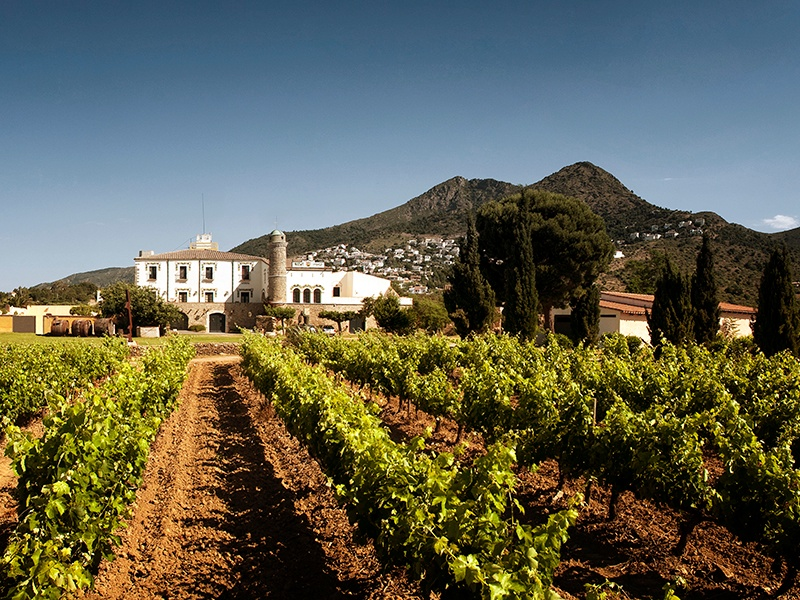 This contemporary winery in Roses features olive groves, fruit trees, and vineyards, and has everything needed for red-wine production, with first-generation installations and 66.5 acres (27 hectares) of Tempranillo and Graciano vine; on the market with Rimontgó, an affiliate of Christie's International Real Estate. Banner image: Also listed with Rimontgó is this vineyard property in Navarra.