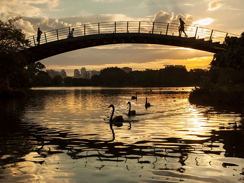 Ibirapuera Park, designed by landscape architect Roberto Burle Marx, has been voted one of the top urban parks in the world. Photograph: Getty Images