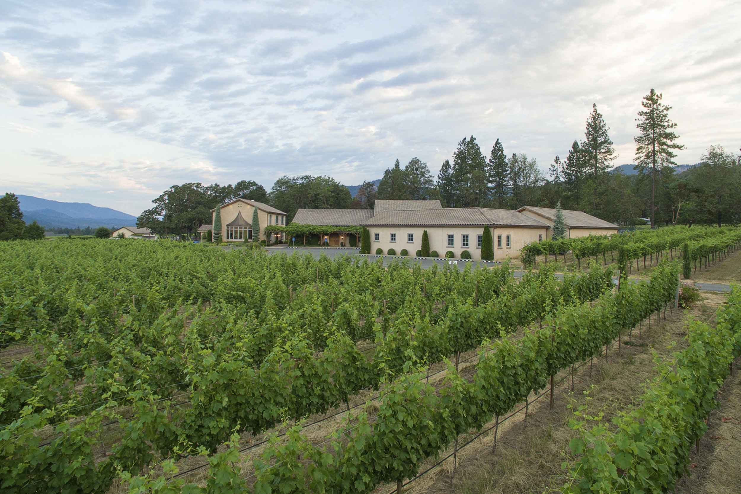 Troon Vineyard near Grants Pass, Oregon,  prides itself in its organic farming methods and its home-irrigated vines.