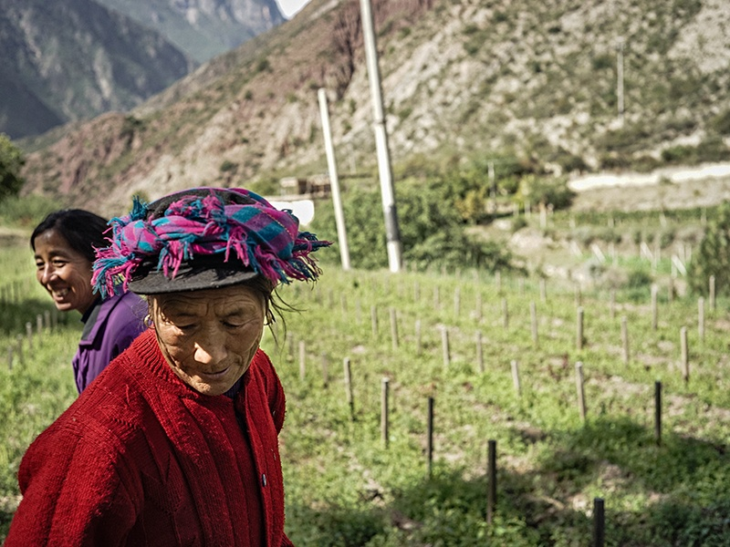 For centuries, local farmers have adapted to working the steep land surrounding Ao Yun in the Himalayas.  Photograph: Juan Hitters.