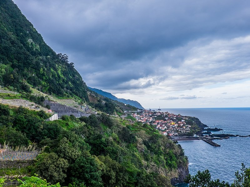 Vineyards on the north side of the volcanic island of Madeira; wines produced here are know for their acidity. Photograph: John Szabo