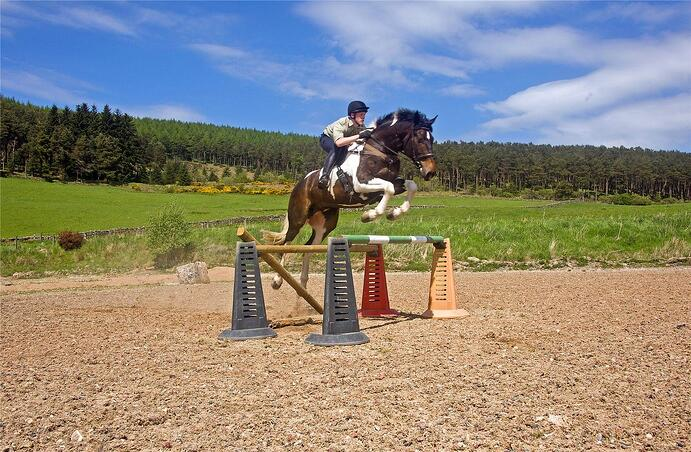 Whitehills Farm is an event rider's paradise amid the forests and moors of northeast Scotland.