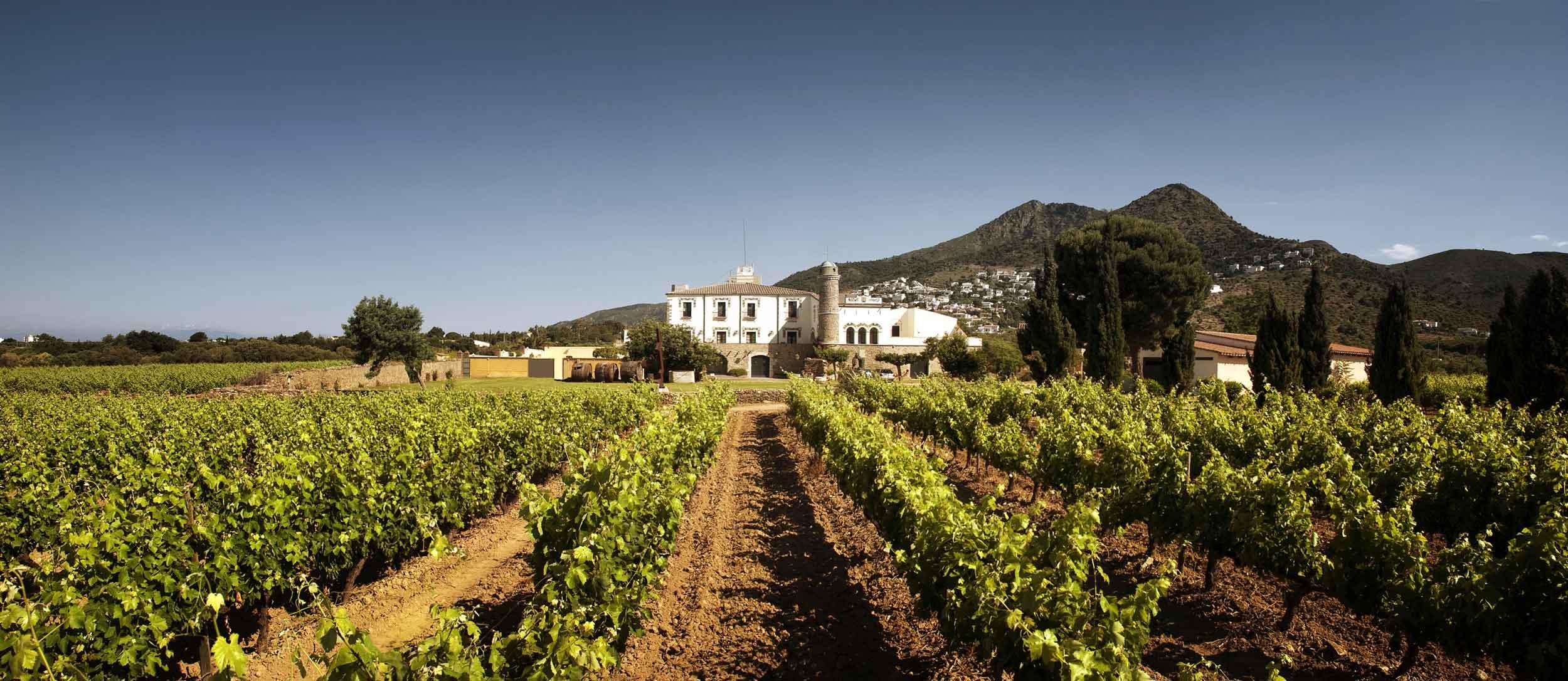 Winery/Vineyard in Roses, Spain