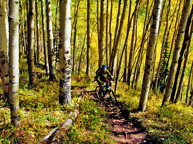 Telluride makes for perfect, if hilly, mountain biking. Photograph: Alamy