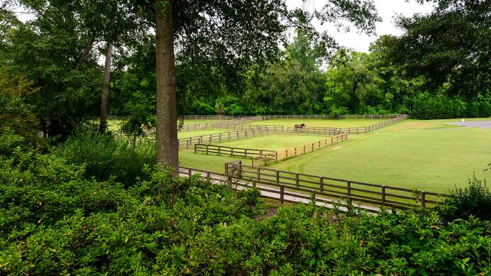 Dancing Horse Farm has outstanding facilities for horse and rider, including paddocks and an equestrian barn, just 15 minutes' drive from downtown Atlanta.