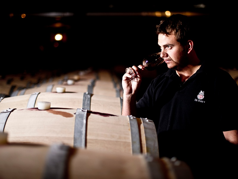 The sumptuous Bordeaux-style reds produced by De Toren will only improve with age.