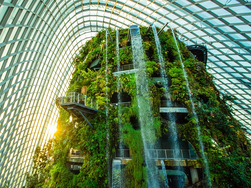 """The Cloud Forest in Singapore's Gardens by the Bay features a """"mountain"""" covered in lush vegetation, with an indoor waterfall."""
