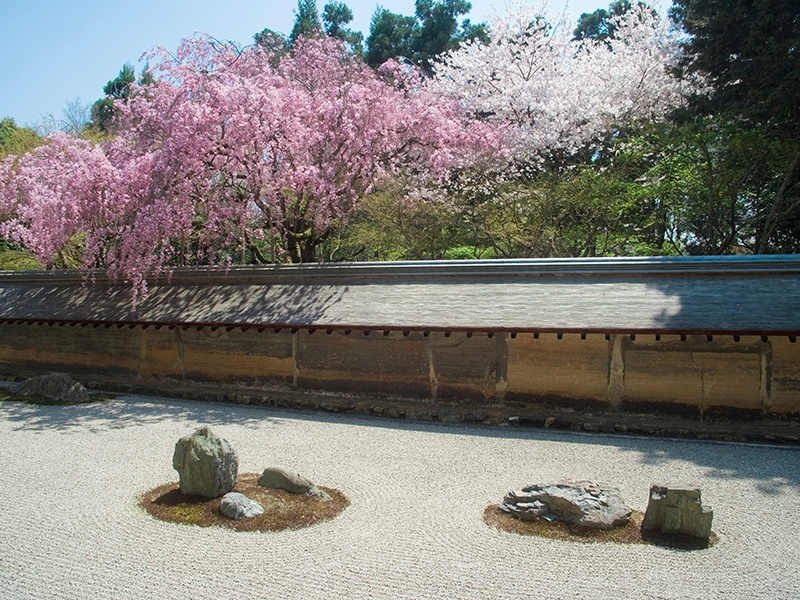 Karesansui Zen gardens abound in Kyoto, and Rioan-ji, with its carefully arranged rock formations and raked pebbles, is considered one of the very finest. It serves as a calm place to meditate. Photograph: Getty Images