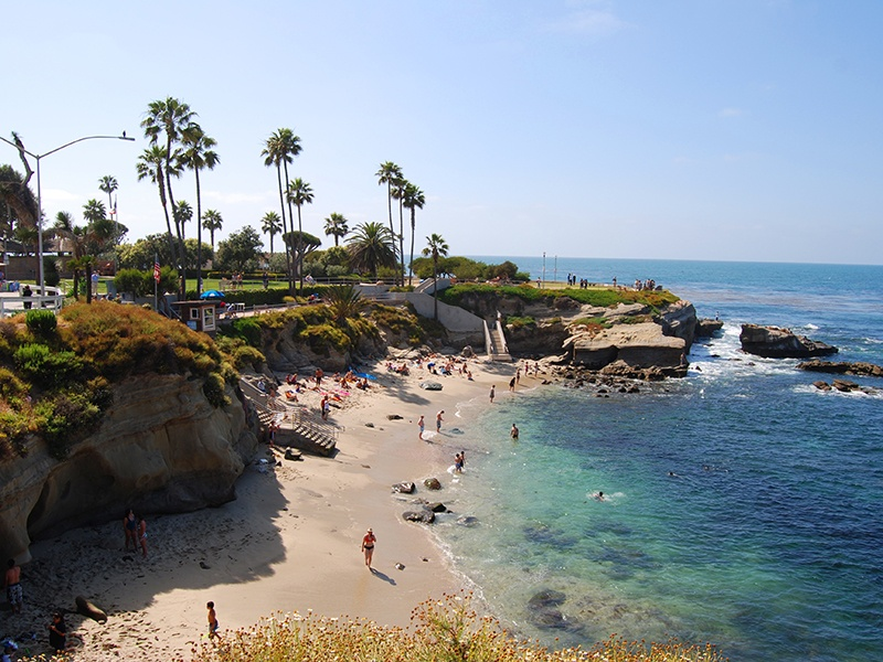 La Jolla's Shell Beach is a pretty alternative to mile-long Ocean Beach, and many sea lions and seals call it home.