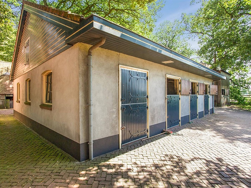 Equestrians will find everything they need: five stables with 25 stalls, two wash stalls, paddocks, and riding areas.