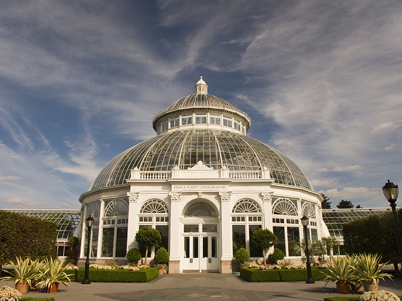 The Enid A Haupt Conservatory, built in the Victorian style in 1902, now has 11 interconnected areas, each featuring a different natural habitat. Banner image: Looking up inside the Art Nouveau greenhouse at Brazil's Botanical Garden of Curitiba. Photograph and banner image: Shutterstock