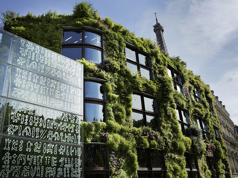 Designed and planted by Gilles Clément and Patrick Blanc, the vertical garden covering the exterior of Paris's Quai Branly museum is a refuge for a range of species, and an important element of urban ecology.