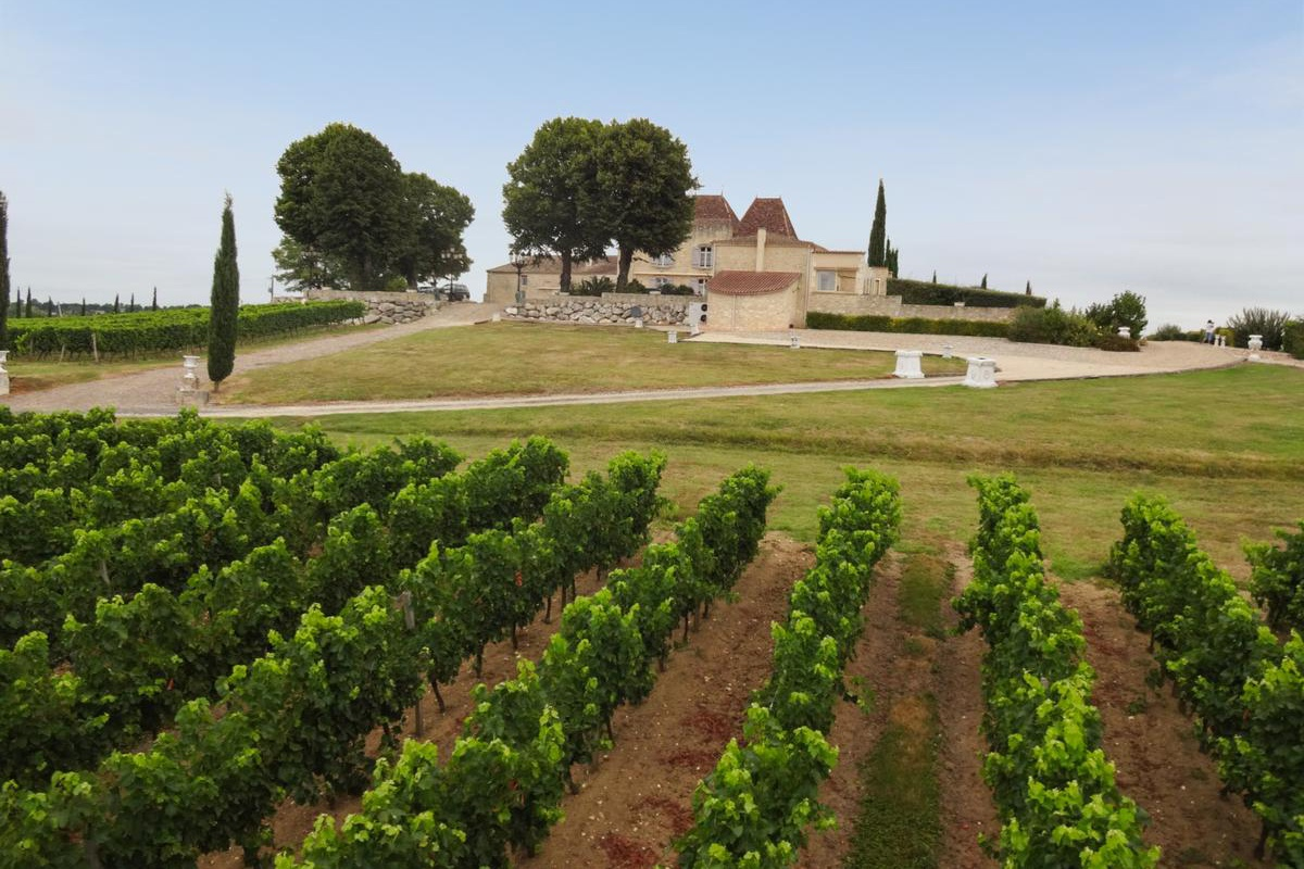 This 17th-century estate, in the highly regarded appellation of Montravel, Bergerac, comprises a château, gites, staff quarters, pool complex, and 30 hectares (74 acres) of land with an olive grove and eight-hectare vineyard, producing around 80,000-100,000 bottles per year.