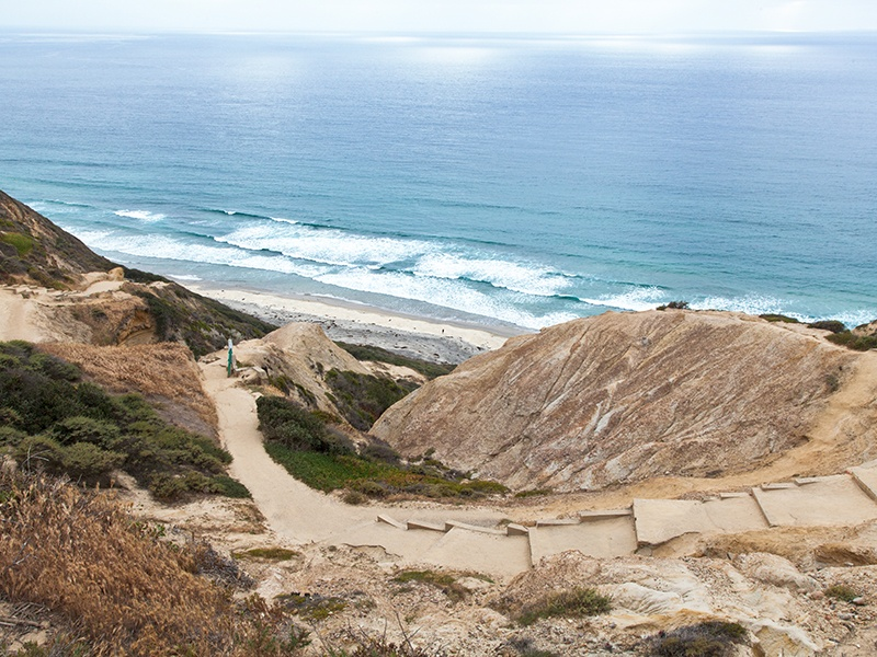 Torrey Pines State Natural Reserve boasts one of the wildest stretches of land on the Southern California coast.Photograph: iStock