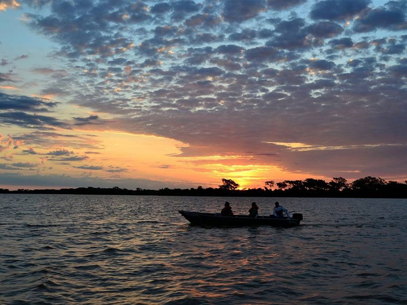 Brazil's Pantanal wetlands—and their variety of wildlife—are best explored by boat along the Mutum River. Photograph: Abercrombie & Kent