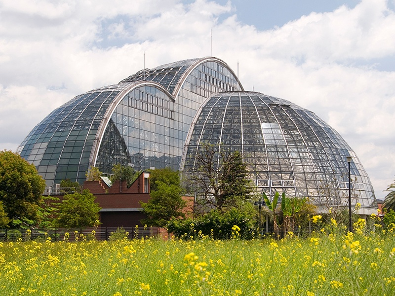 Located in Toyko Bay, Yumenoshima Island's Tropical Greenhouse Dome—actually three domes—contain around 1,000 species of tropical and semitropical plants. Photograph: Alamy